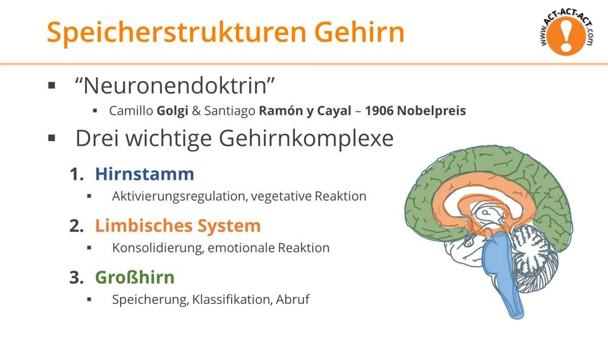 Psychologie Aufnahmetest Kapitel 6: Speicherstrukturen im Gehirn